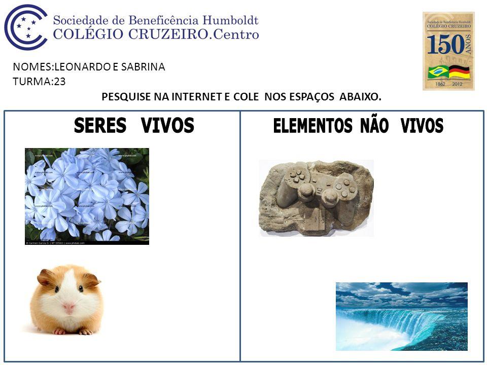 NOMES:LEONARDO E SABRINA TURMA:23 PESQUISE NA INTERNET E COLE NOS ESPAÇOS ABAIXO.
