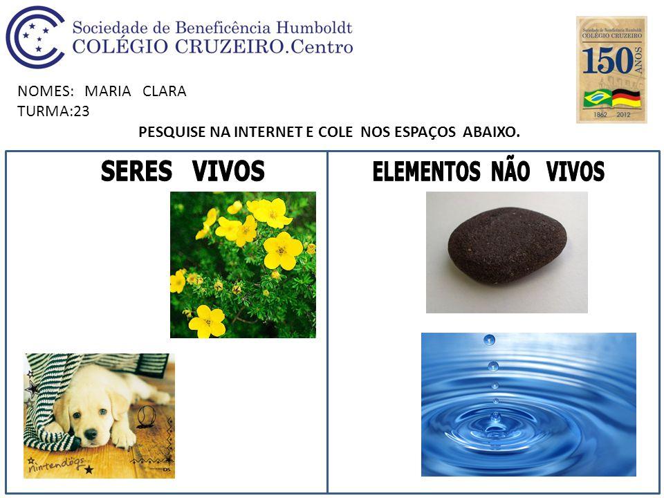 NOMES: MARIA CLARA TURMA:23 PESQUISE NA INTERNET E COLE NOS ESPAÇOS ABAIXO.