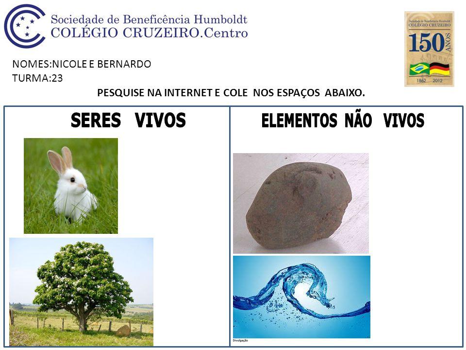 NOMES:NICOLE E BERNARDO TURMA:23 PESQUISE NA INTERNET E COLE NOS ESPAÇOS ABAIXO.
