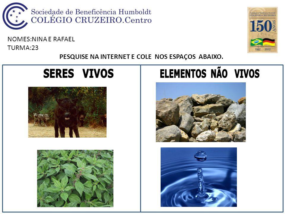 NOMES:NINA E RAFAEL TURMA:23 PESQUISE NA INTERNET E COLE NOS ESPAÇOS ABAIXO.
