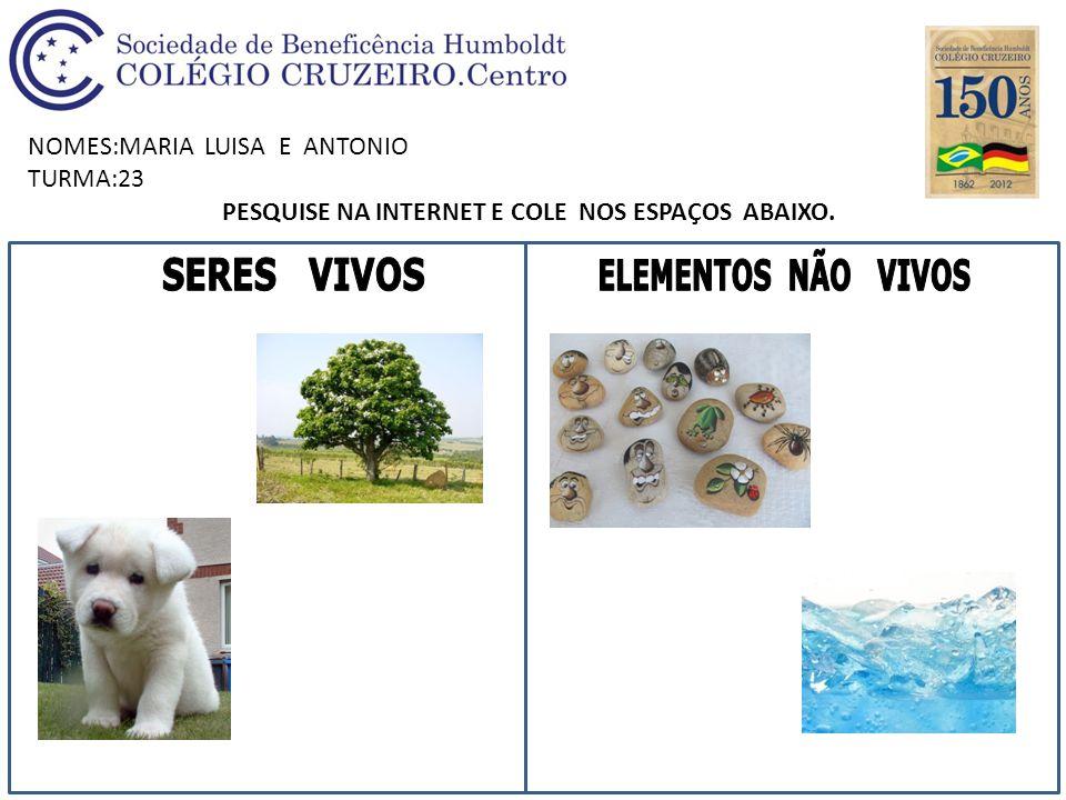 NOMES:MARIA LUISA E ANTONIO TURMA:23 PESQUISE NA INTERNET E COLE NOS ESPAÇOS ABAIXO.