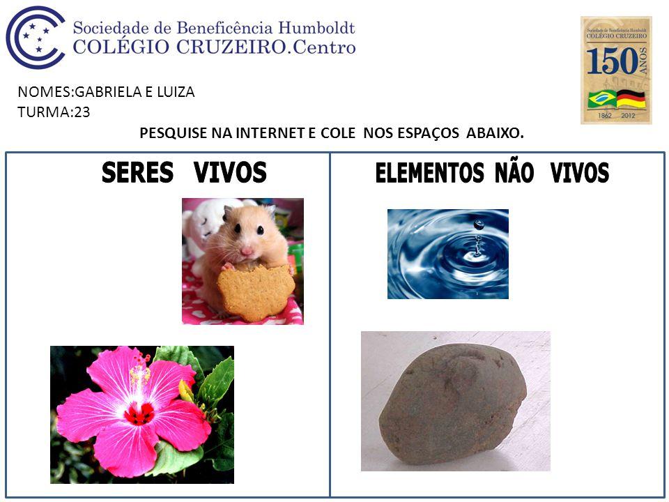 NOMES:GABRIELA E LUIZA TURMA:23 PESQUISE NA INTERNET E COLE NOS ESPAÇOS ABAIXO.