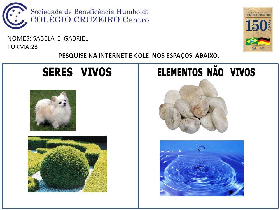 NOMES:ISABELA E GABRIEL TURMA:23 PESQUISE NA INTERNET E COLE NOS ESPAÇOS ABAIXO.