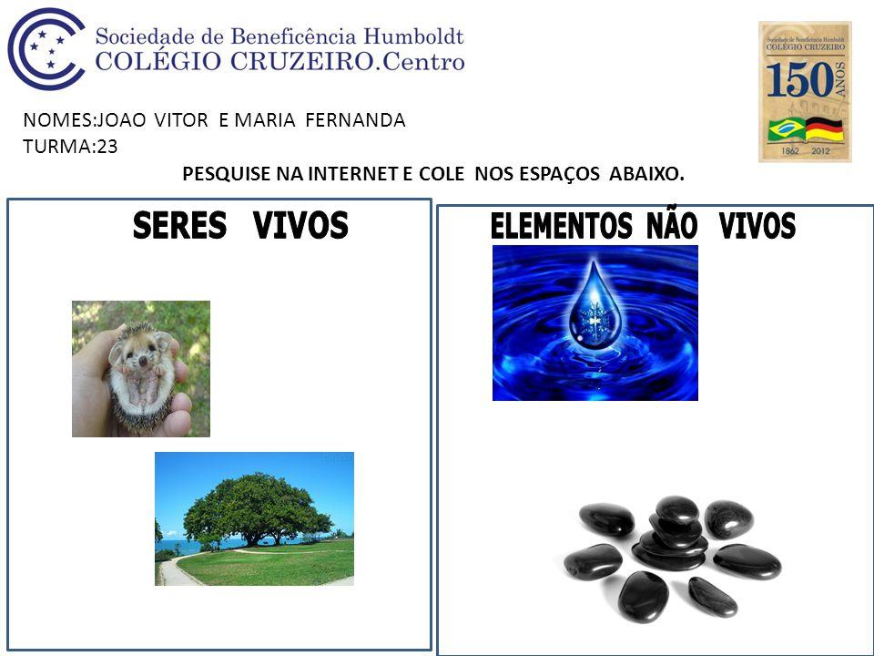 NOMES:JOAO VITOR E MARIA FERNANDA TURMA:23 PESQUISE NA INTERNET E COLE NOS ESPAÇOS ABAIXO.