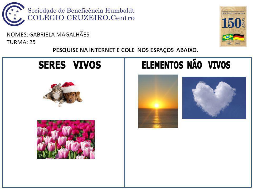 NOMES: GABRIELA MAGALHÃES TURMA: 25 PESQUISE NA INTERNET E COLE NOS ESPAÇOS ABAIXO.