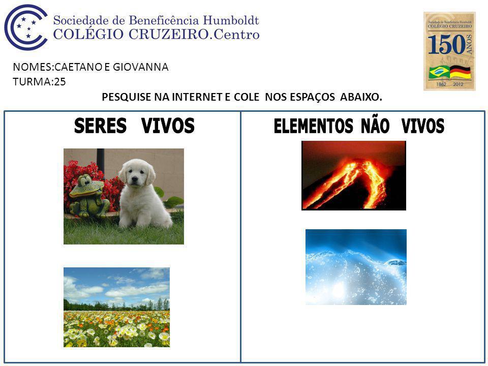 NOMES:CAETANO E GIOVANNA TURMA:25 PESQUISE NA INTERNET E COLE NOS ESPAÇOS ABAIXO.