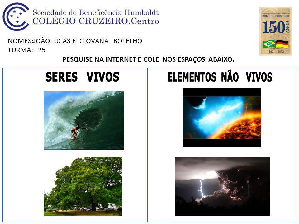NOMES:JOÃO LUCAS E GIOVANA BOTELHO TURMA: 25 PESQUISE NA INTERNET E COLE NOS ESPAÇOS ABAIXO.