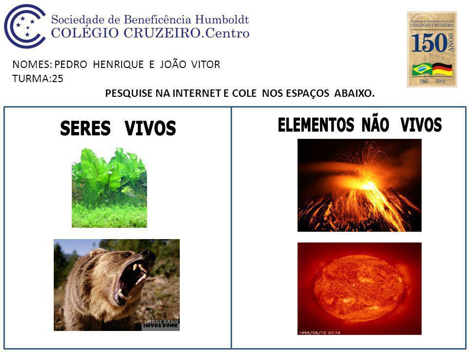 NOMES: PEDRO HENRIQUE E JOÃO VITOR TURMA:25 PESQUISE NA INTERNET E COLE NOS ESPAÇOS ABAIXO.