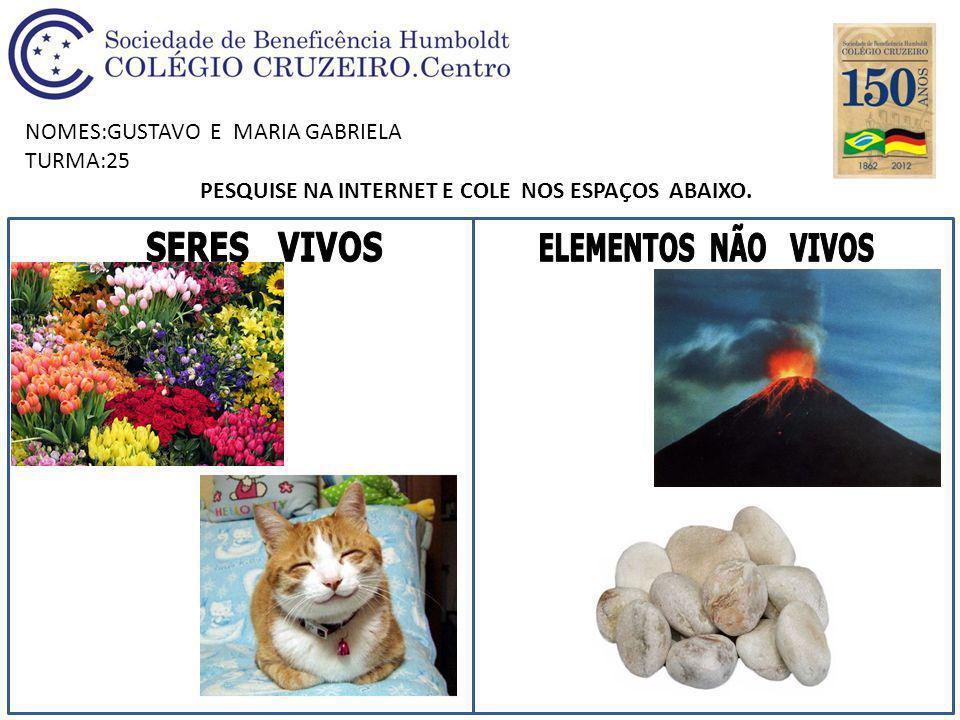 NOMES:GUSTAVO E MARIA GABRIELA TURMA:25 PESQUISE NA INTERNET E COLE NOS ESPAÇOS ABAIXO.