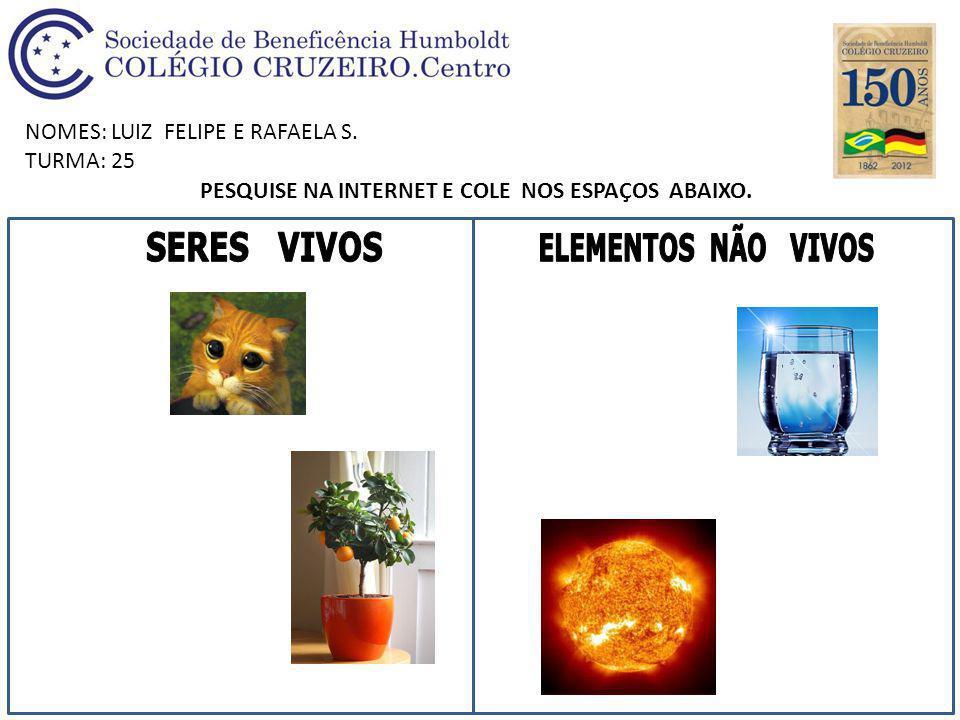 NOMES: LUIZ FELIPE E RAFAELA S. TURMA: 25 PESQUISE NA INTERNET E COLE NOS ESPAÇOS ABAIXO.