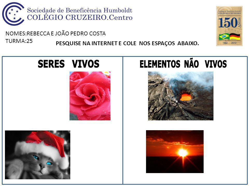 NOMES:REBECCA E JOÃO PEDRO COSTA TURMA:25 PESQUISE NA INTERNET E COLE NOS ESPAÇOS ABAIXO.