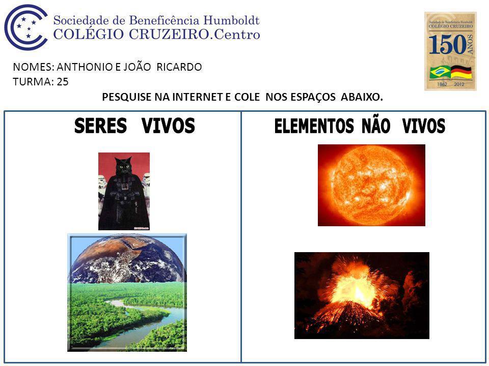 NOMES: ANTHONIO E JOÃO RICARDO TURMA: 25 PESQUISE NA INTERNET E COLE NOS ESPAÇOS ABAIXO.