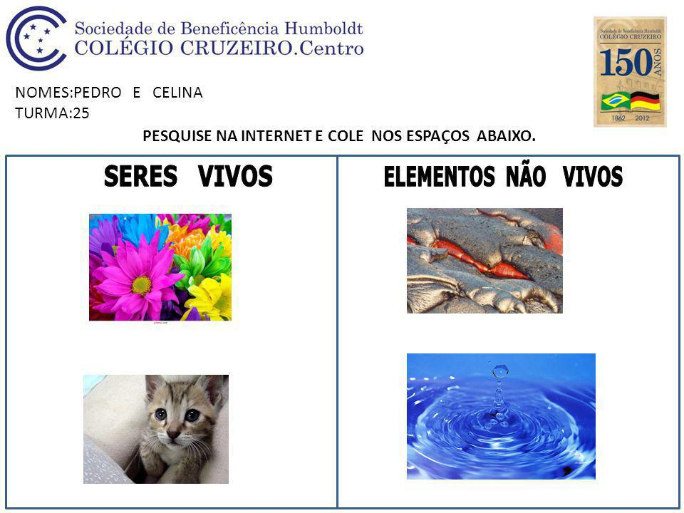 NOMES:PEDRO E CELINA TURMA:25 PESQUISE NA INTERNET E COLE NOS ESPAÇOS ABAIXO.