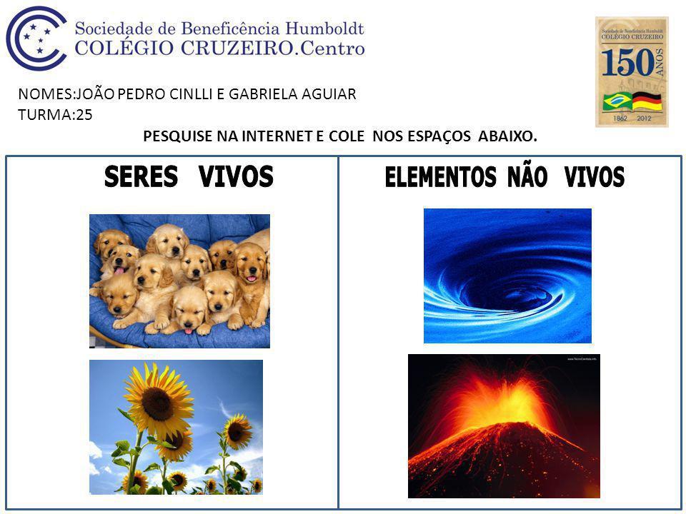 NOMES:JOÃO PEDRO CINLLI E GABRIELA AGUIAR TURMA:25 PESQUISE NA INTERNET E COLE NOS ESPAÇOS ABAIXO.