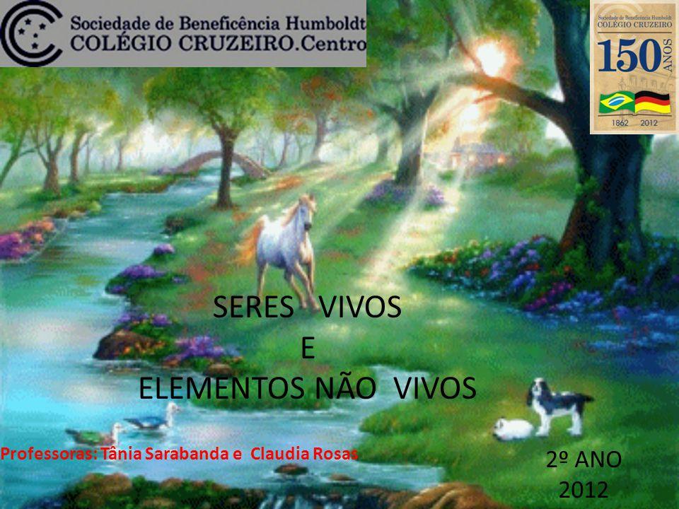 SERES VIVOS E ELEMENTOS NÃO VIVOS 2º ANO 2012 Professoras: Tânia Sarabanda e Claudia Rosas
