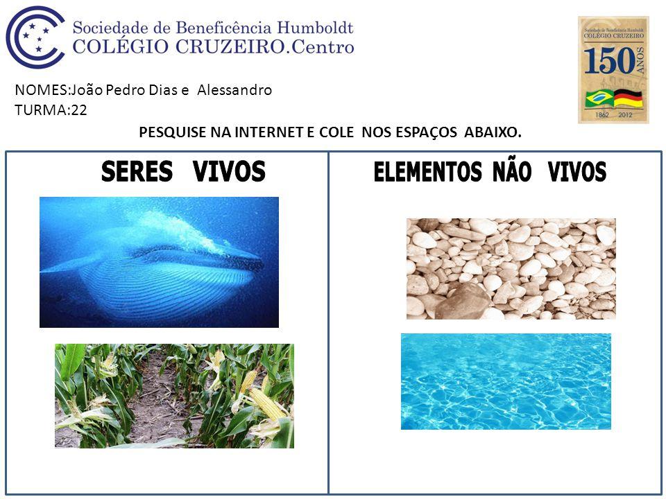 NOMES:João Pedro Dias e Alessandro TURMA:22 PESQUISE NA INTERNET E COLE NOS ESPAÇOS ABAIXO.