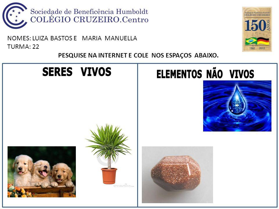 NOMES: LUIZA BASTOS E MARIA MANUELLA TURMA: 22 PESQUISE NA INTERNET E COLE NOS ESPAÇOS ABAIXO.