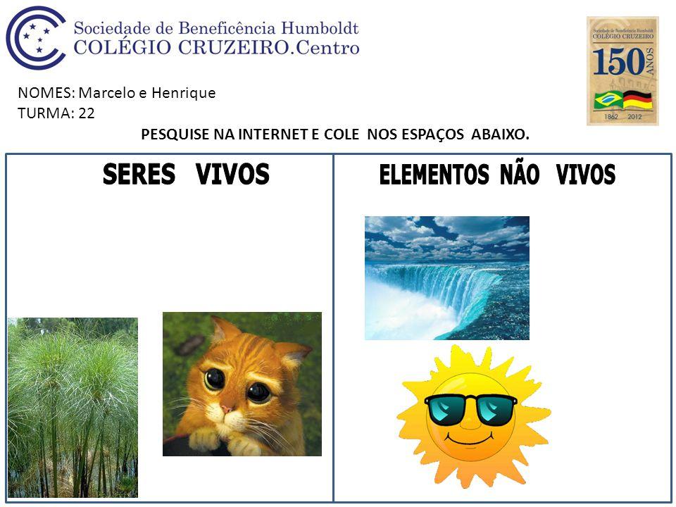 NOMES: Marcelo e Henrique TURMA: 22 PESQUISE NA INTERNET E COLE NOS ESPAÇOS ABAIXO.