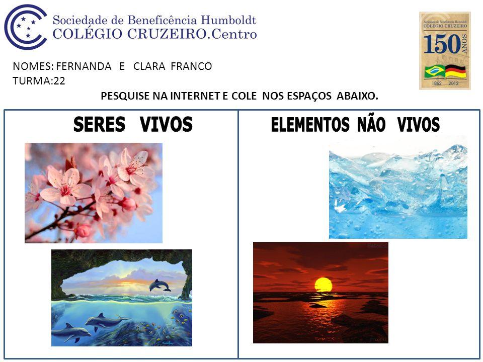 NOMES: FERNANDA E CLARA FRANCO TURMA:22 PESQUISE NA INTERNET E COLE NOS ESPAÇOS ABAIXO.