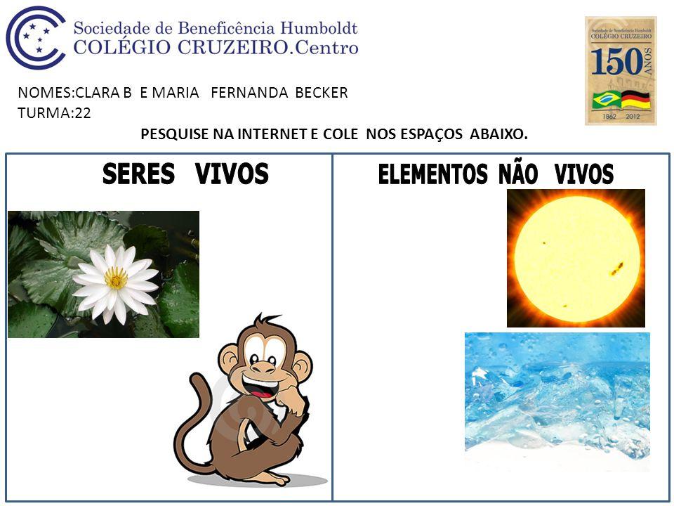 NOMES:CLARA B E MARIA FERNANDA BECKER TURMA:22 PESQUISE NA INTERNET E COLE NOS ESPAÇOS ABAIXO.