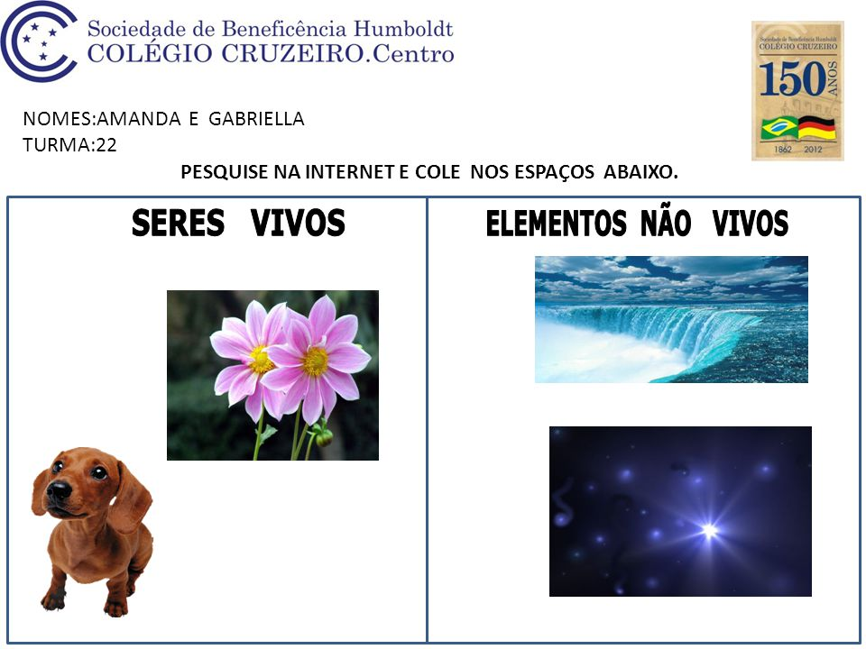 NOMES: JOÃO DE BARROS E GUILHERME TURMA:22 PESQUISE NA INTERNET E COLE NOS ESPAÇOS ABAIXO.