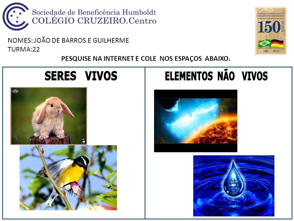 NOMES:JOÃO GABRIEL E LAURA TURMA:22 PESQUISE NA INTERNET E COLE NOS ESPAÇOS ABAIXO.