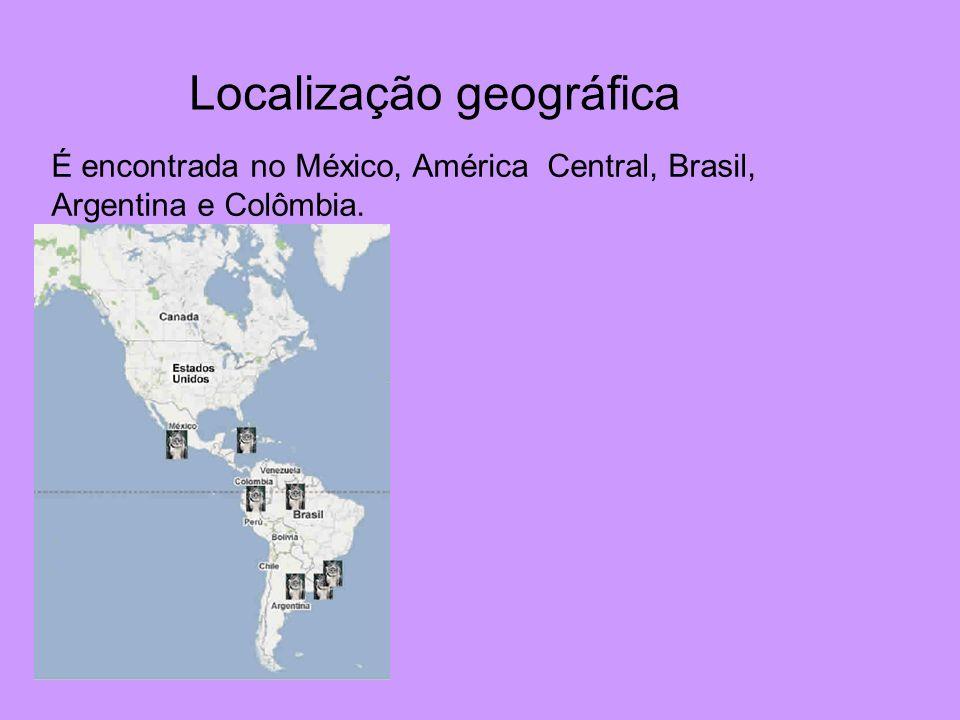 Localização geográfica É encontrada no México, América Central, Brasil, Argentina e Colômbia.