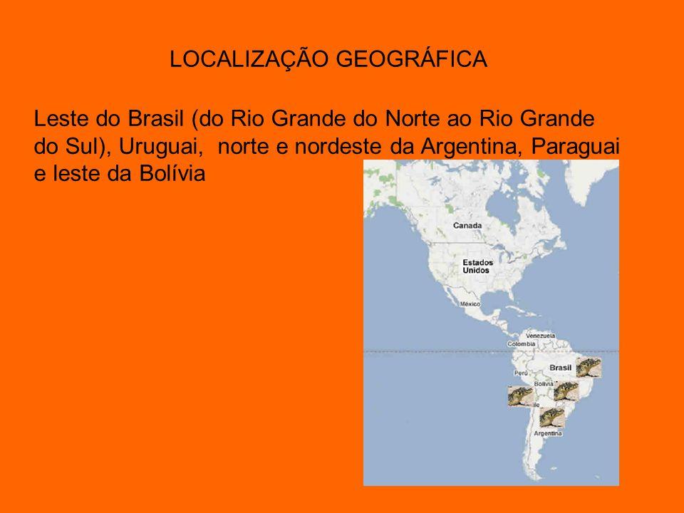 LOCALIZAÇÃO GEOGRÁFICA Leste do Brasil (do Rio Grande do Norte ao Rio Grande do Sul), Uruguai, norte e nordeste da Argentina, Paraguai e leste da Bolí