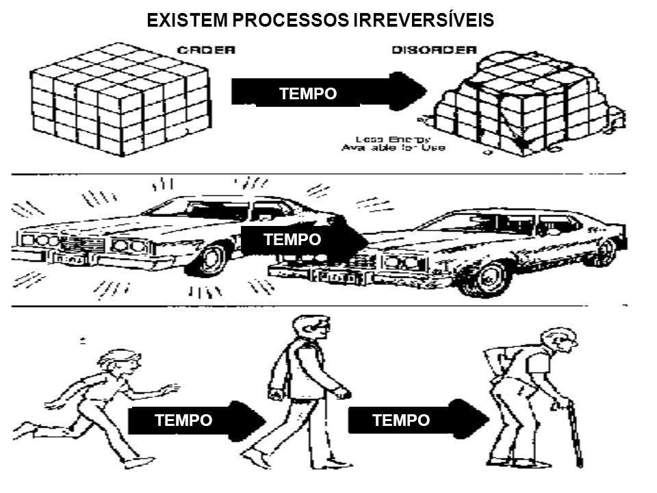 EXISTEM PROCESSOS IRREVERSÍVEIS TEMPO