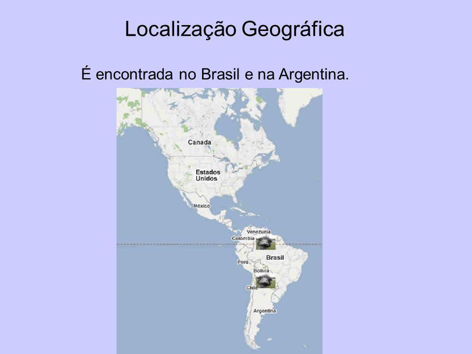 Localização Geográfica É encontrada no Brasil e na Argentina.