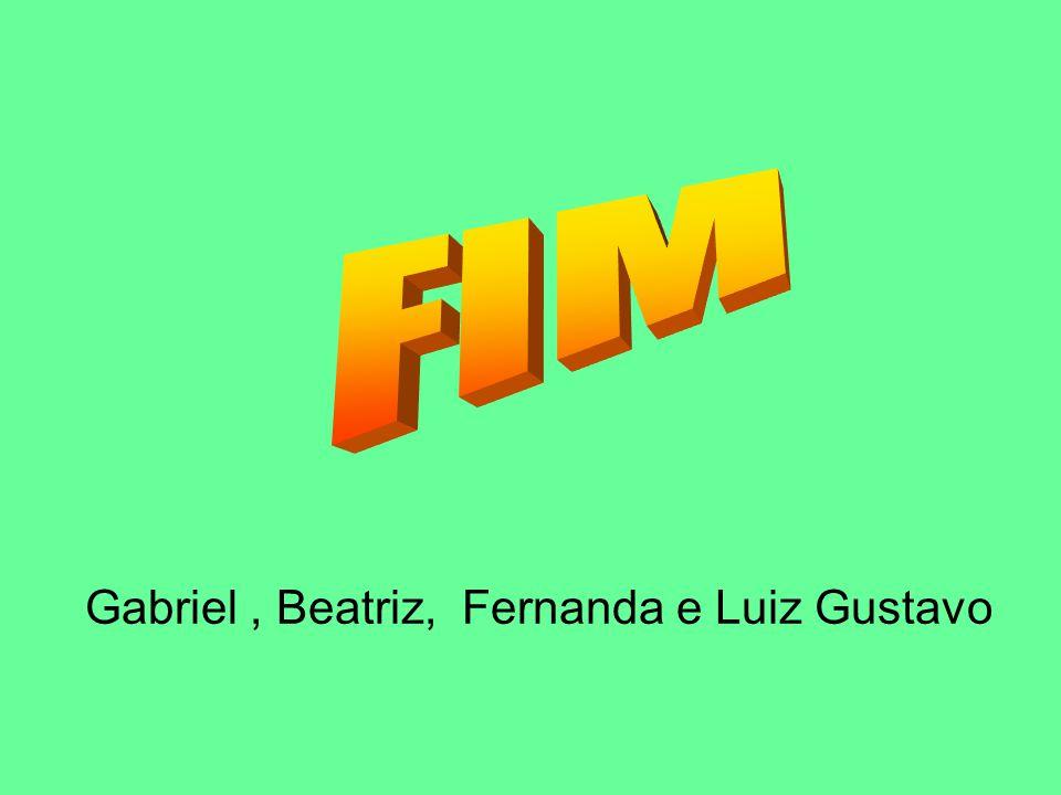 Gabriel, Beatriz, Fernanda e Luiz Gustavo