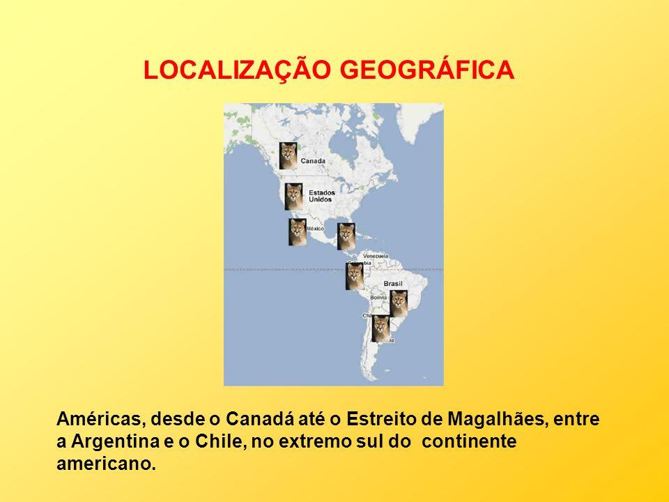 LOCALIZAÇÃO GEOGRÁFICA Américas, desde o Canadá até o Estreito de Magalhães, entre a Argentina e o Chile, no extremo sul do continente americano.
