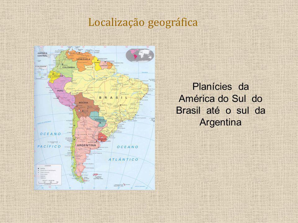 Localização geográfica Planícies da América do Sul do Brasil até o sul da Argentina