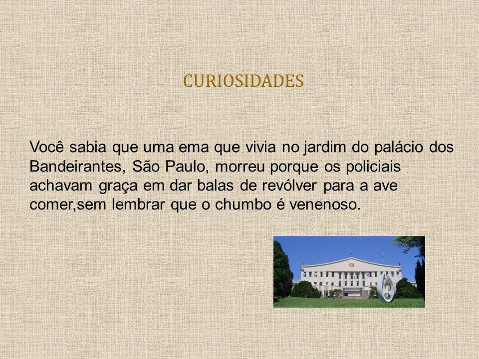 CURIOSIDADES Você sabia que uma ema que vivia no jardim do palácio dos Bandeirantes, São Paulo, morreu porque os policiais achavam graça em dar balas