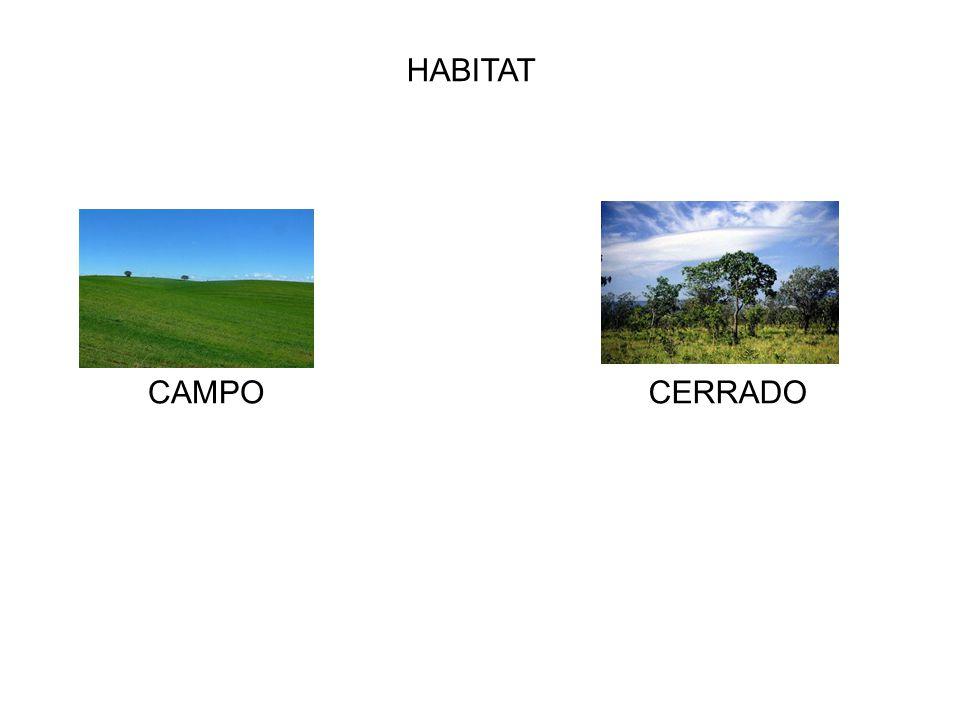 HABITAT CERRADOCAMPO