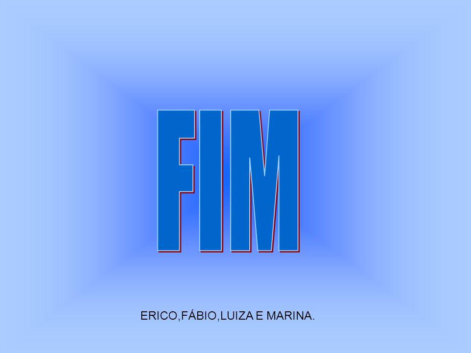 ERICO,FÁBIO,LUIZA E MARINA.