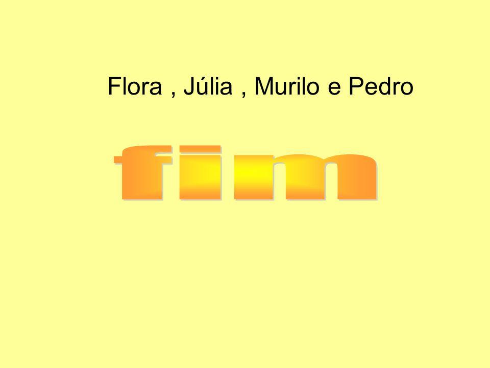 Flora, Júlia, Murilo e Pedro