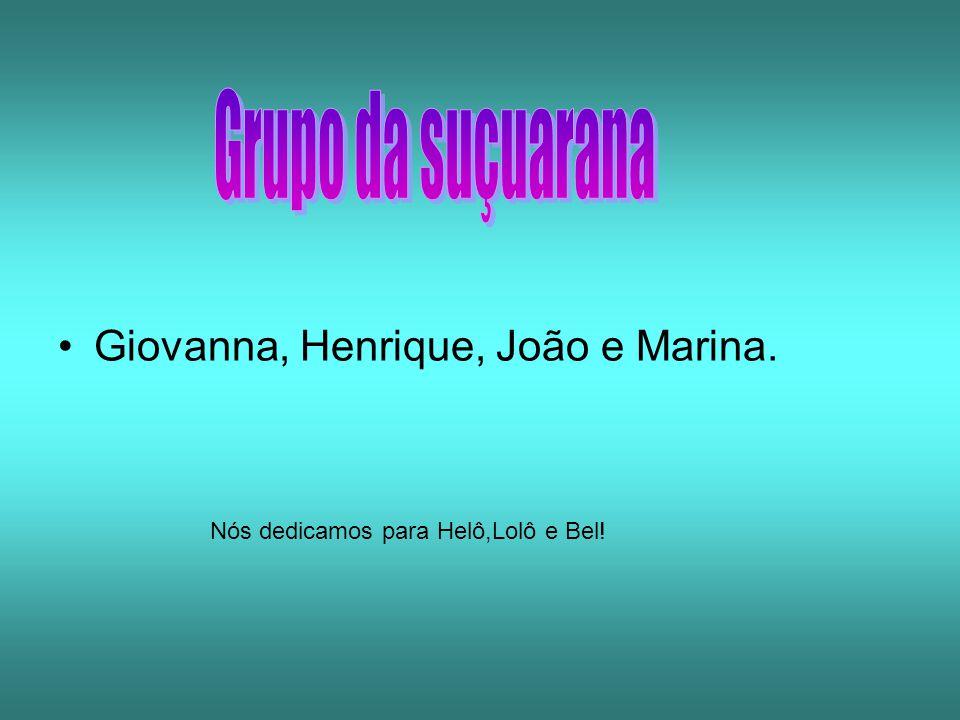Giovanna, Henrique, João e Marina. Nós dedicamos para Helô,Lolô e Bel!