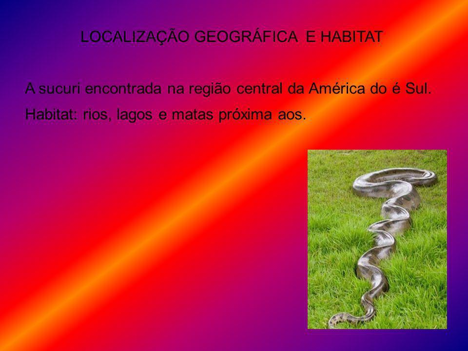 LOCALIZAÇÃO GEOGRÁFICA E HABITAT A sucuri encontrada na região central da América do é Sul. Habitat: rios, lagos e matas próxima aos.