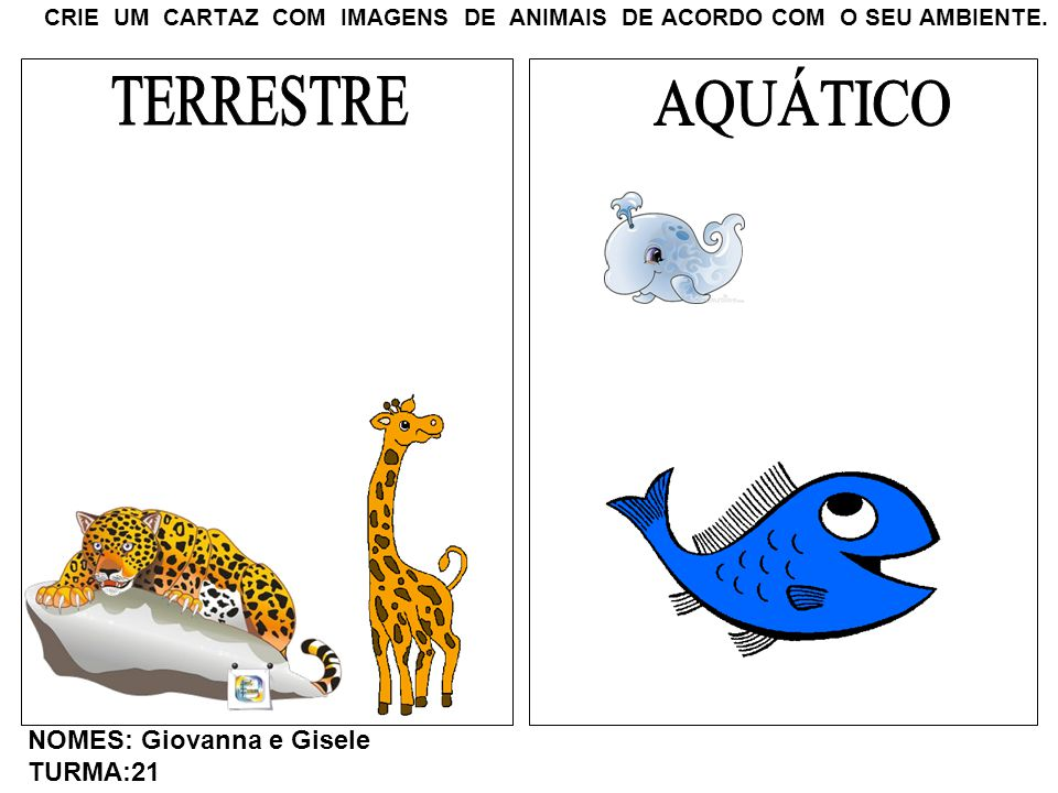 CRIE UM CARTAZ COM IMAGENS DE ANIMAIS DE ACORDO COM O SEU AMBIENTE. NOMES: Giovanna e Gisele TURMA:21