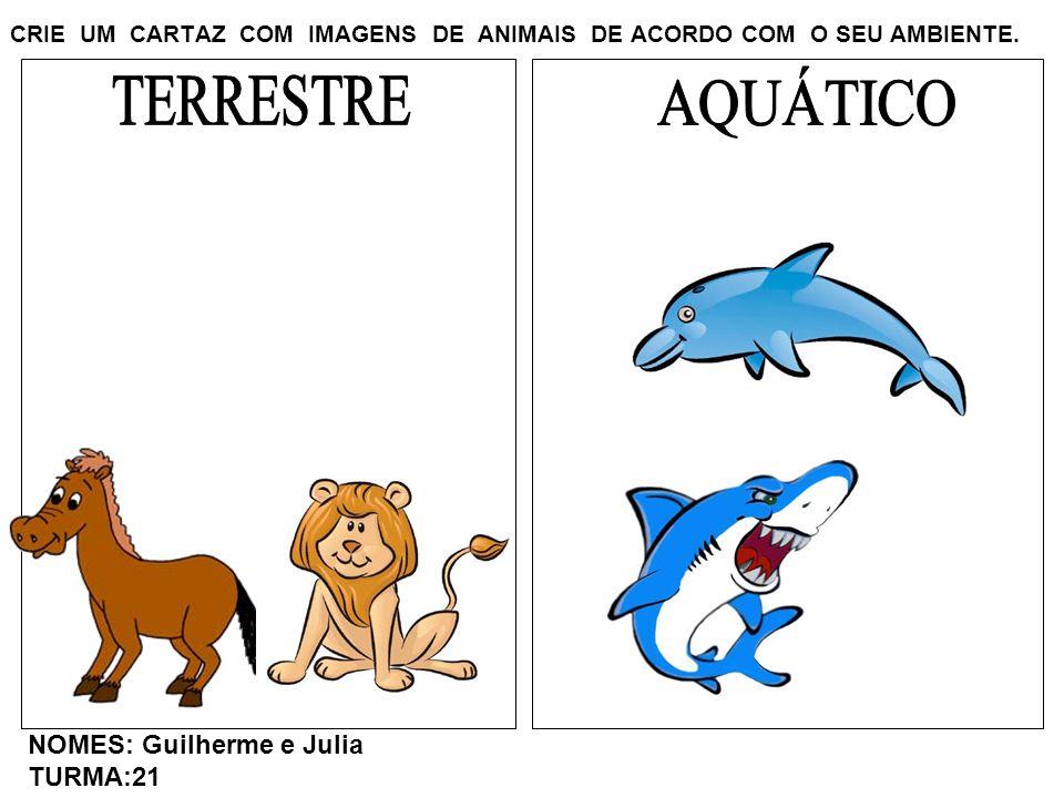 CRIE UM CARTAZ COM IMAGENS DE ANIMAIS DE ACORDO COM O SEU AMBIENTE. NOMES: Guilherme e Julia TURMA:21