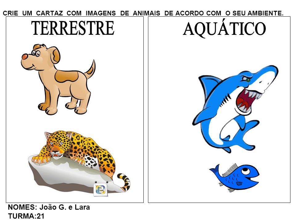 CRIE UM CARTAZ COM IMAGENS DE ANIMAIS DE ACORDO COM O SEU AMBIENTE. NOMES: João G. e Lara TURMA:21
