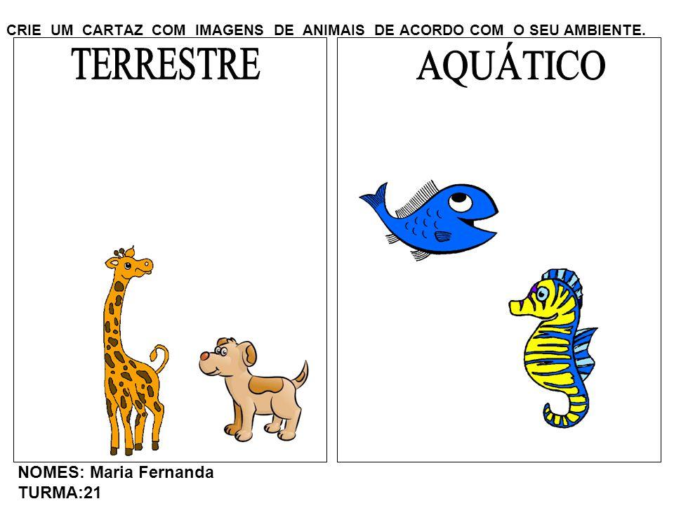 CRIE UM CARTAZ COM IMAGENS DE ANIMAIS DE ACORDO COM O SEU AMBIENTE. NOMES: Maria Fernanda TURMA:21