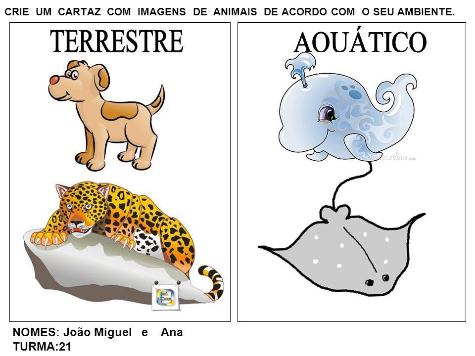 CRIE UM CARTAZ COM IMAGENS DE ANIMAIS DE ACORDO COM O SEU AMBIENTE. NOMES: João Miguel e Ana TURMA:21