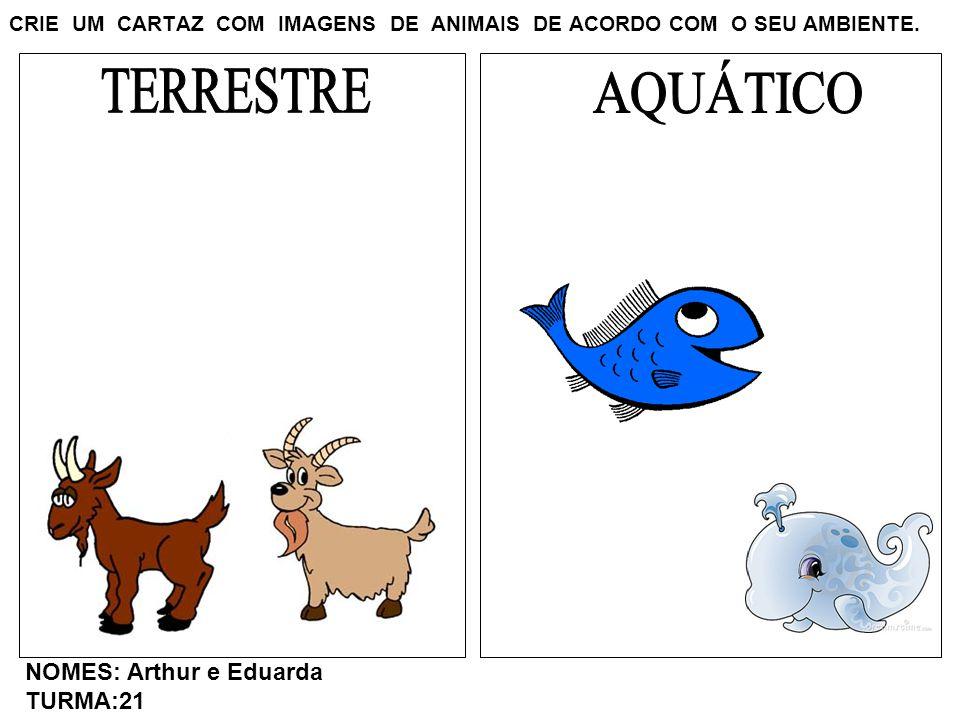 CRIE UM CARTAZ COM IMAGENS DE ANIMAIS DE ACORDO COM O SEU AMBIENTE. NOMES: Arthur e Eduarda TURMA:21