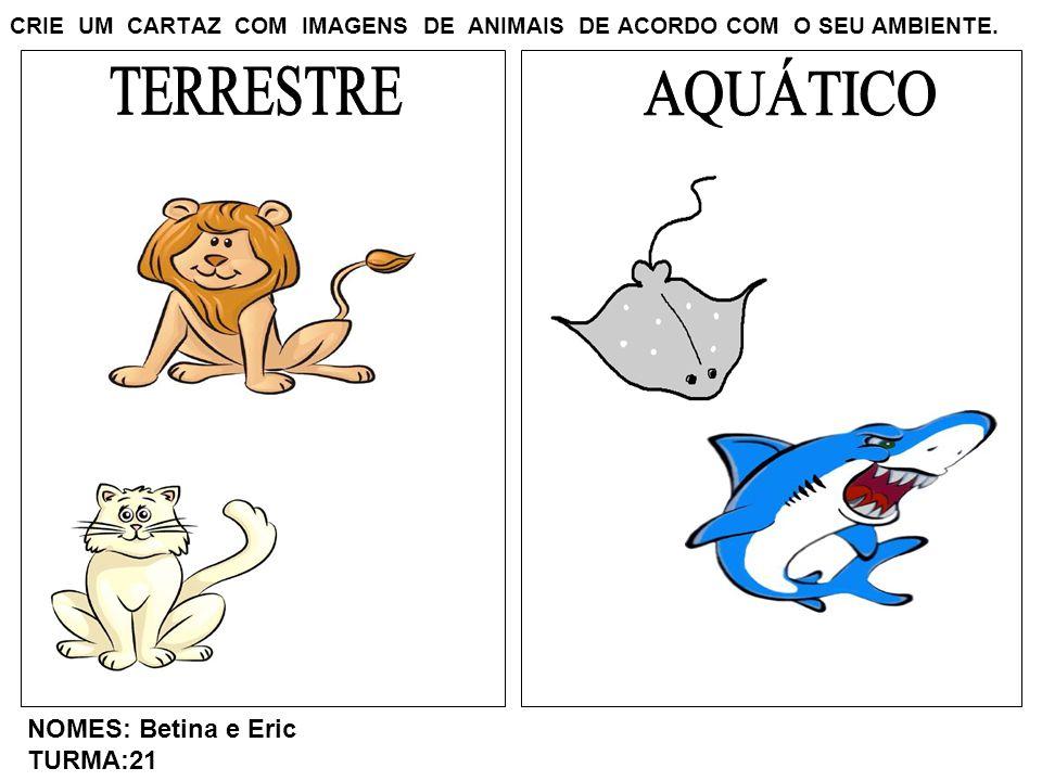 CRIE UM CARTAZ COM IMAGENS DE ANIMAIS DE ACORDO COM O SEU AMBIENTE. NOMES: Betina e Eric TURMA:21