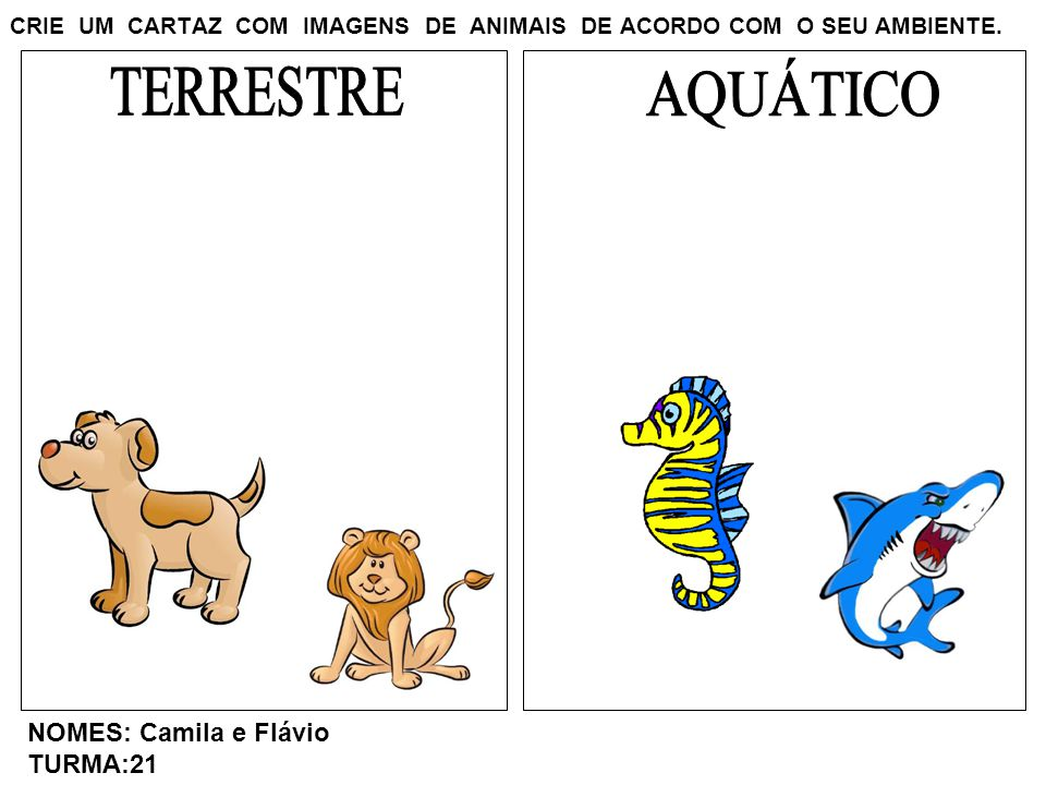 CRIE UM CARTAZ COM IMAGENS DE ANIMAIS DE ACORDO COM O SEU AMBIENTE. NOMES: Camila e Flávio TURMA:21