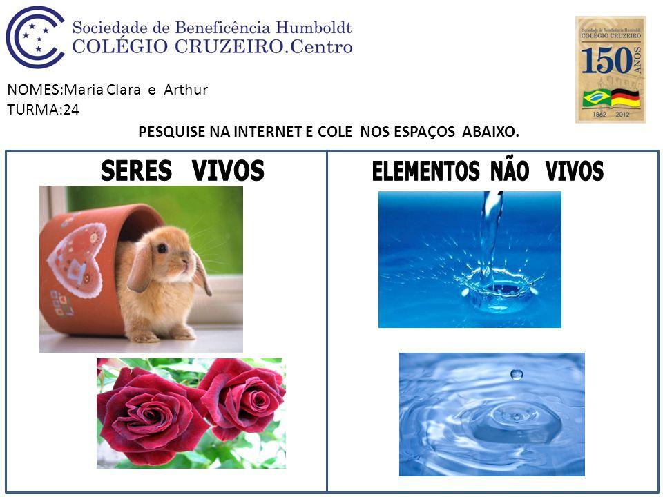 NOMES:Maria Clara e Arthur TURMA:24 PESQUISE NA INTERNET E COLE NOS ESPAÇOS ABAIXO.