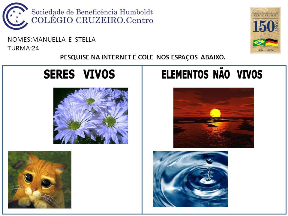 NOMES:MANUELLA E STELLA TURMA:24 PESQUISE NA INTERNET E COLE NOS ESPAÇOS ABAIXO.