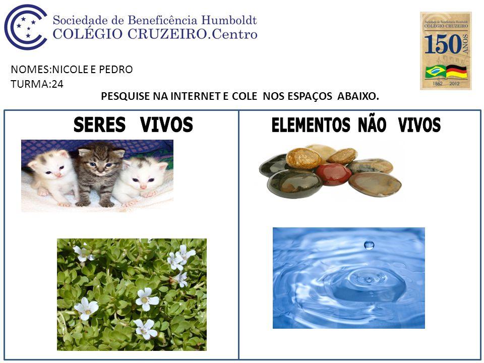 NOMES:NICOLE E PEDRO TURMA:24 PESQUISE NA INTERNET E COLE NOS ESPAÇOS ABAIXO.
